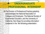 undergraduate professional internship1