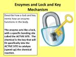 enzymes and lock and key mechanism