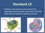 standard 12
