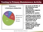 testing is primary maintenance activity