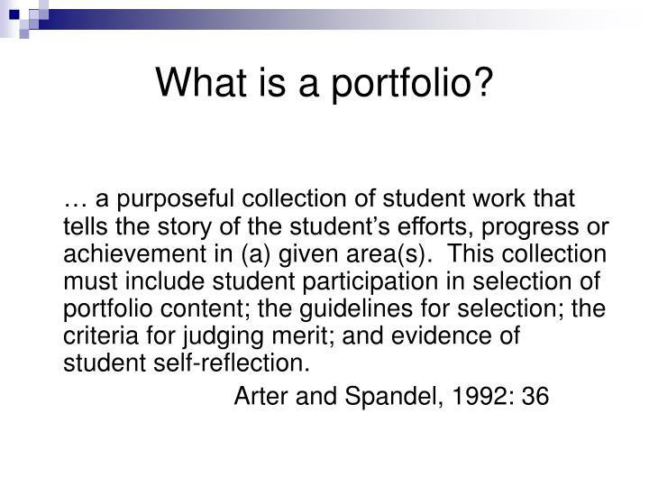 What is a portfolio?