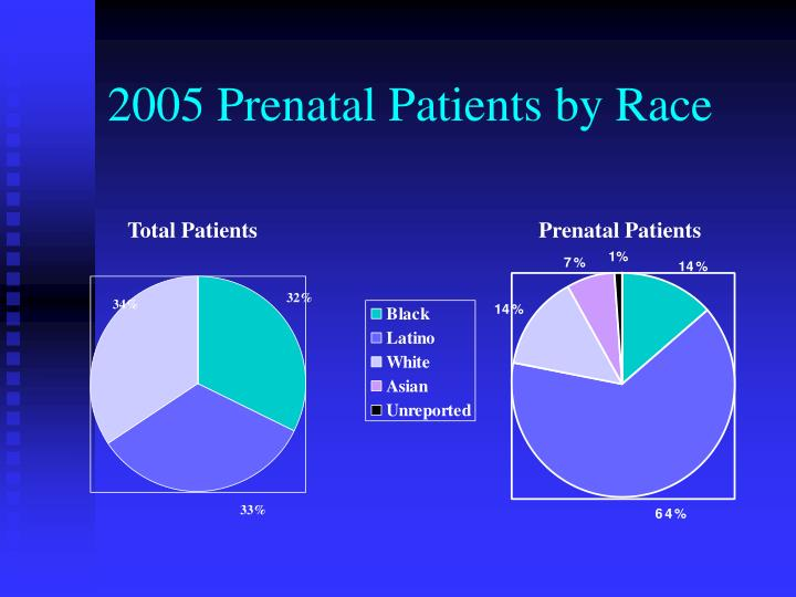 2005 Prenatal Patients by Race
