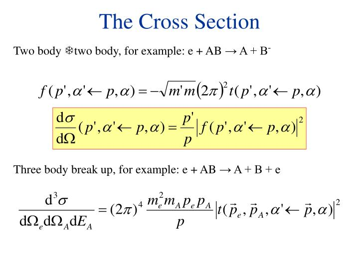 The Cross Section