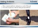 adding antibiotic