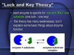 lock and key theory