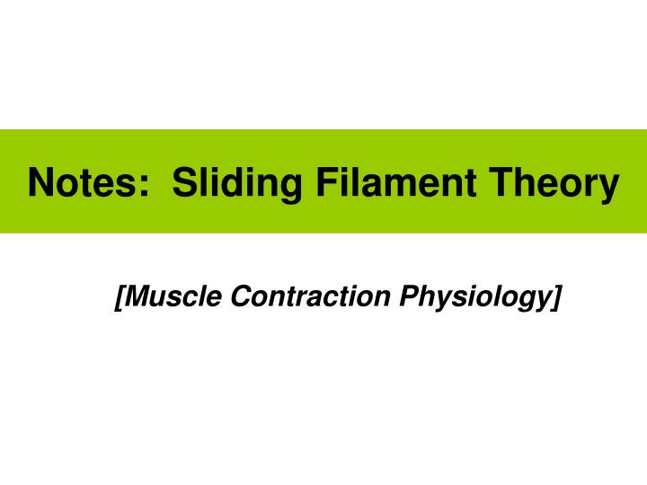 notes sliding filament theory n.