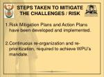 steps taken to mitigate the challenges risk