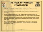 the role of witness protection1
