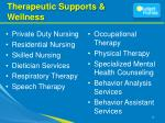 therapeutic supports wellness