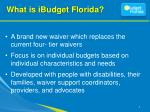 what is ibudget florida