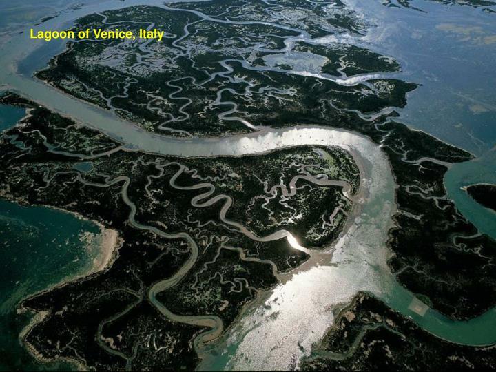 Lagoon of Venice, Italy