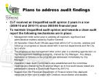 plans to address audit findings