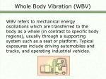 whole body vibration wbv