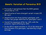 genetic variation of parvovirus b19
