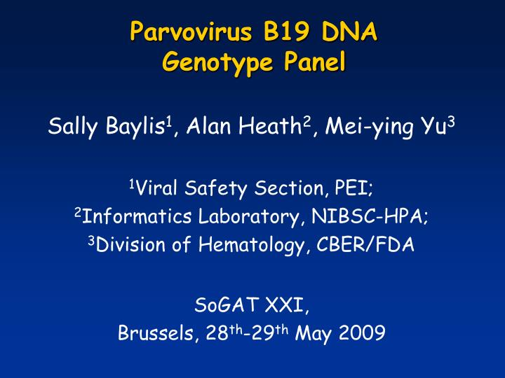 parvovirus b19 dna genotype panel n.