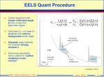 eels quant procedure
