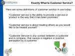 exactly what is customer service