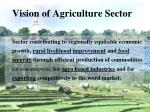 vision of agriculture sector