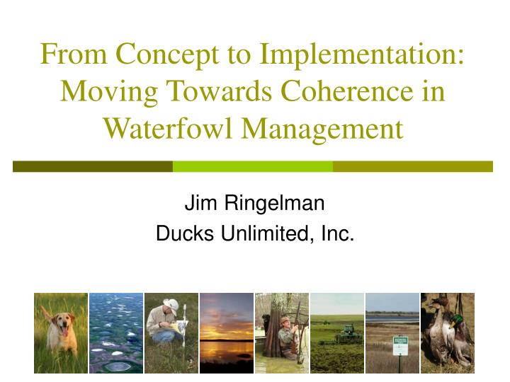 from concept to implementation moving towards coherence in waterfowl management n.