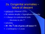 2a congenital anomalies failure of descent1