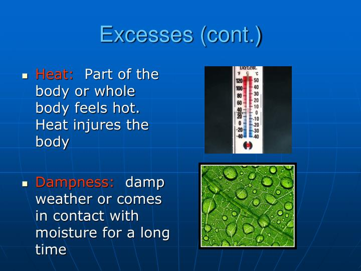 Excesses (cont.)