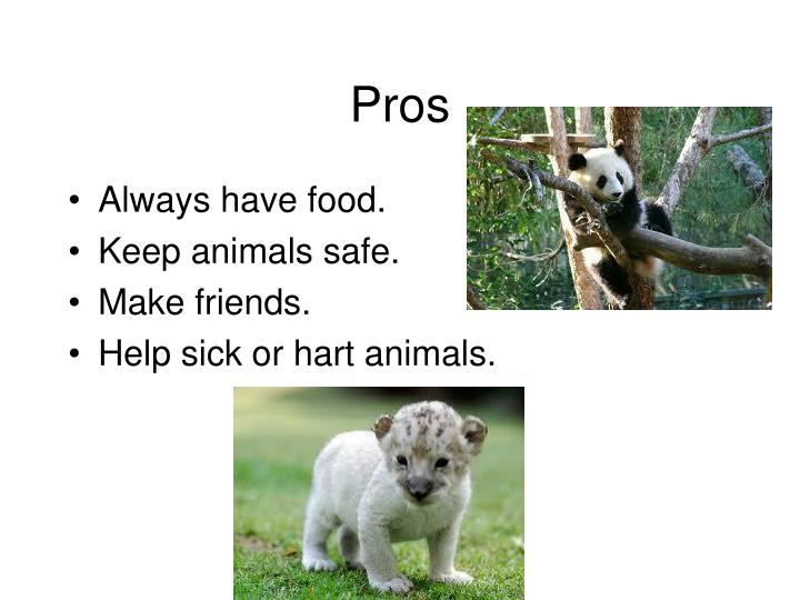 pros and cons of animal cross breeding Best answer: if you are talking dogs, there are pros to breeding many dog breeds are bred to work this includes herding dogs, hunting dogs (even if they don't actually hunt), police dogs, tracking dogs, detection dogs (bombs, drugs, etc), service dogs among many others.