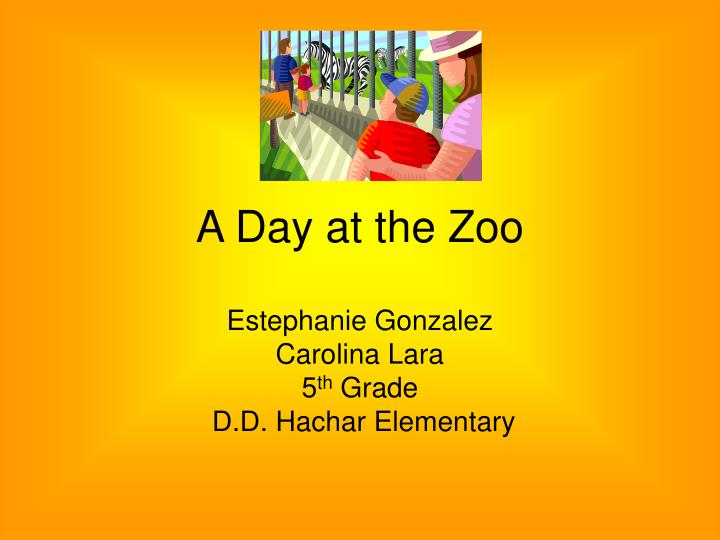 a day at the zoo n.