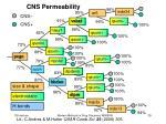 cns permeability