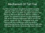 mechanism of turf toe