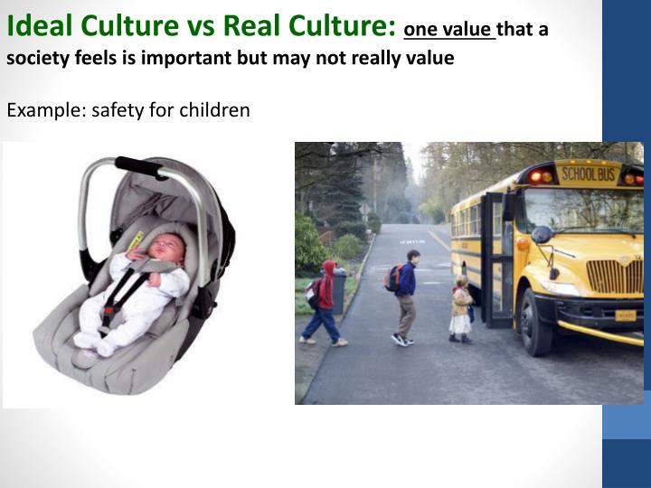 Ideal Culture vs Real Culture: