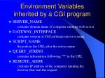environment variables inherited by a cgi program