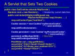a servlet that sets two cookies