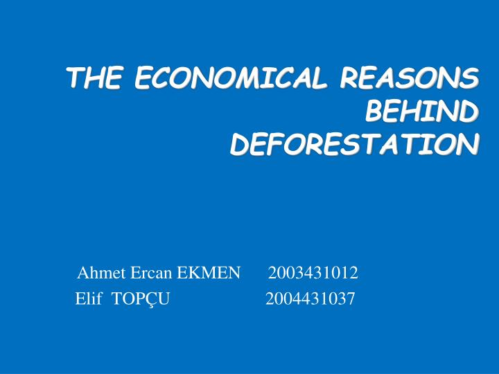 the economical reasons behind deforestation n.