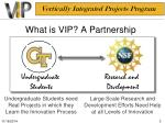 what is vip a partnership