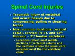 spinal cord injuries1