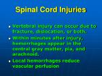 spinal cord injuries2