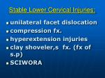 stable lower cervical injuries