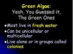 green algae yeah you guessed it the green ones