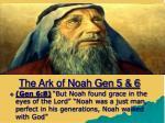 the ark of noah gen 5 61