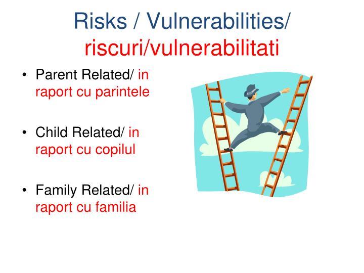 Risks / Vulnerabilities/