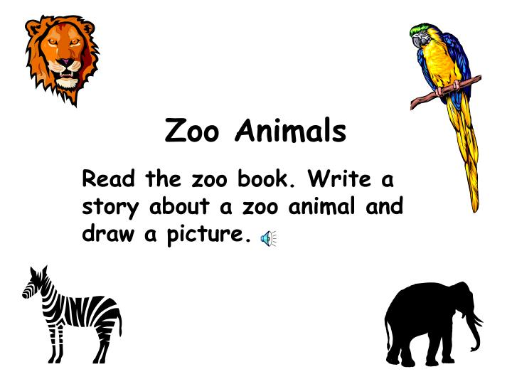zoo animals n.