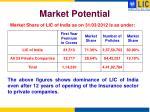 market potential13