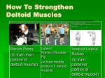 how to strengthen deltoid muscles