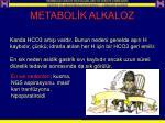 metabol k alkaloz