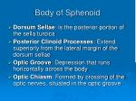 body of sphenoid