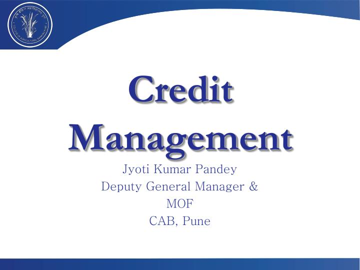 credit management n.