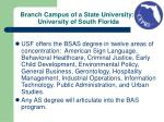 branch campus of a state university university of south florida