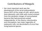 contributions of margulis