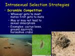 intrasexual selection strategies2