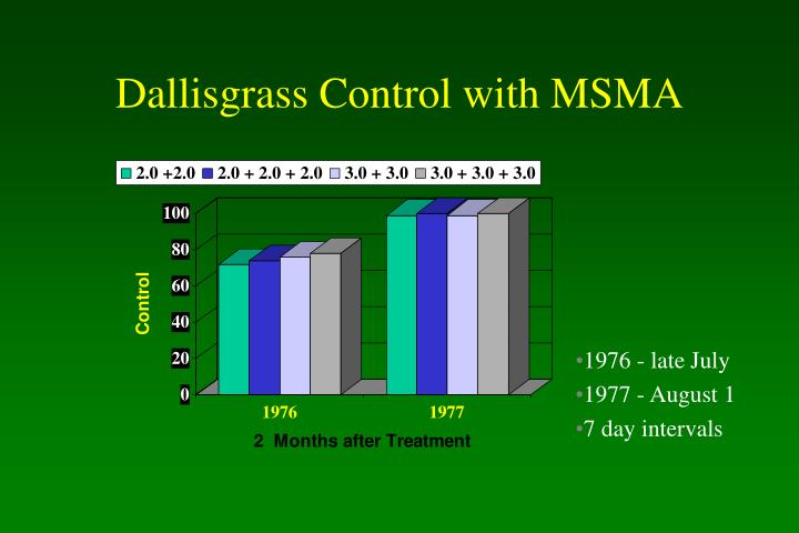 Dallisgrass Control with MSMA